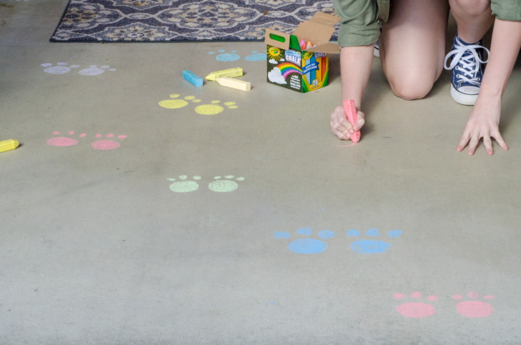 Draw bunny tracks with sidewalk chalk.